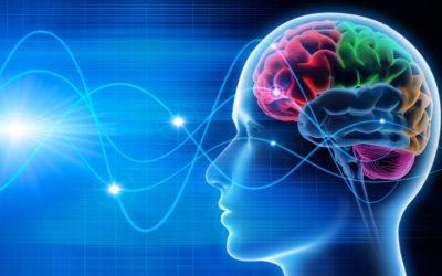 Do Psi Phenomena Exist? Debating the Nature of Consciousness